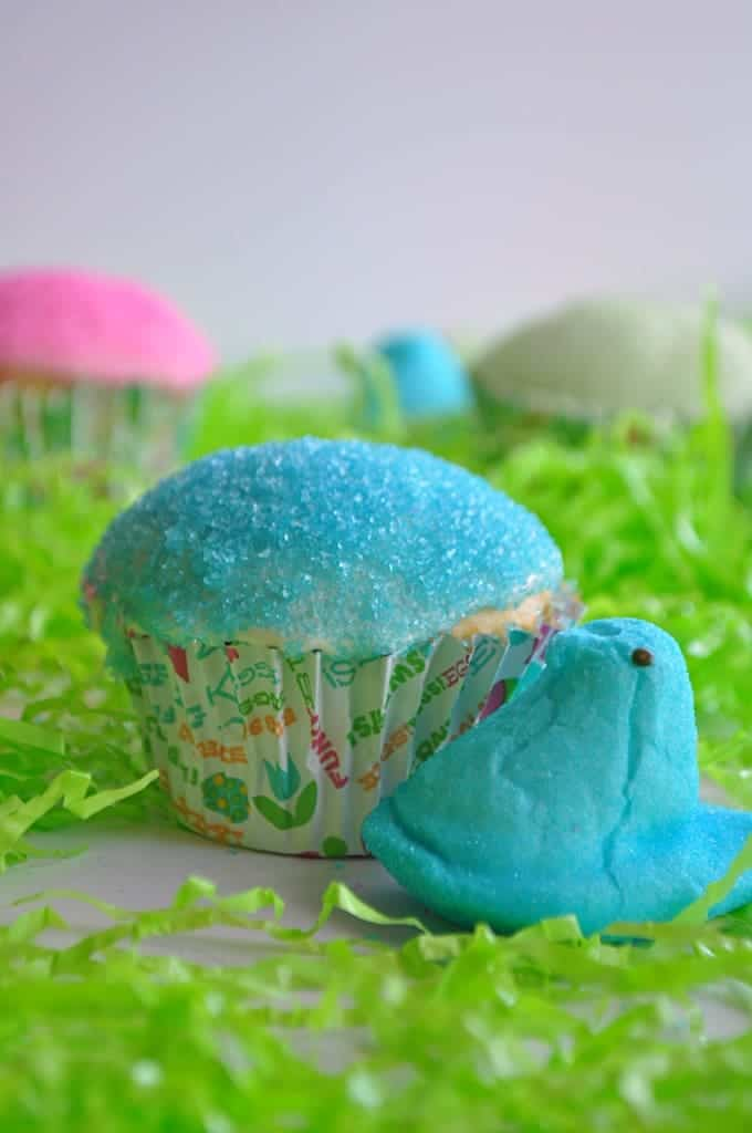 Cupcake with blue peeps frosting in easter grass with a blue peep next to it.