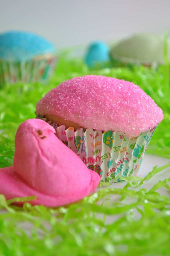 Cupcake topped with pink peep frosting with a pink peep beside it.