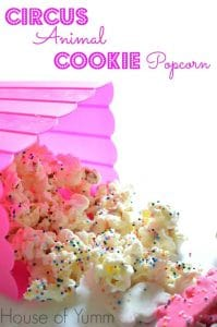 Circus Animal Cookie Popcorn.  Perfect snack for kids!  Looks like a fairy made it!