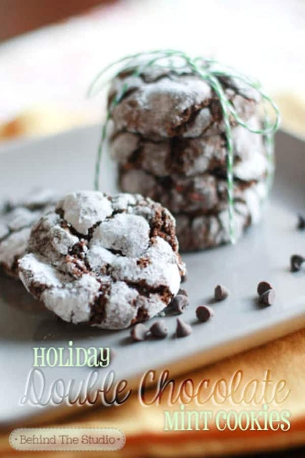 Double-chocolate-holiday-mint-cookies2(600)