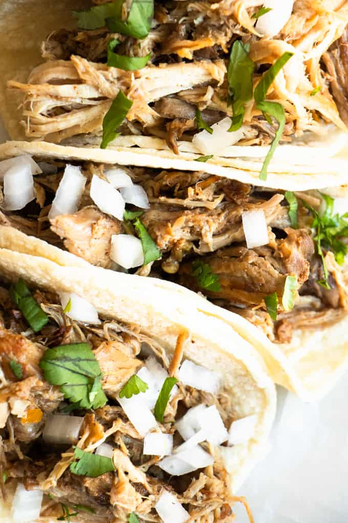 Up close view of pork carnitas on corn tortillas, topped with white onion and cilantro.