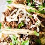 Sweet Barbacoa loaded into soft white corn tortillas and topped with melted cheese.