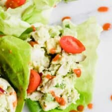 Overhead of lettuce cups filled with avocado chicken salad