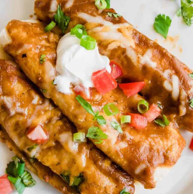 Overhead view of three chorizo enchiladas on a plate topped with sour cream, cilantro and tomato.