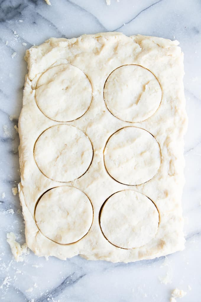 Overhead image showing circle cuts in biscuit dough.